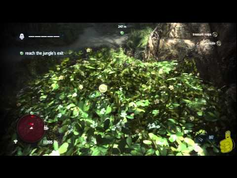 Assassin's Creed IV Black Flag: Sequence 3 Memory 7 (A Single Madman) 100% Sync – HTG